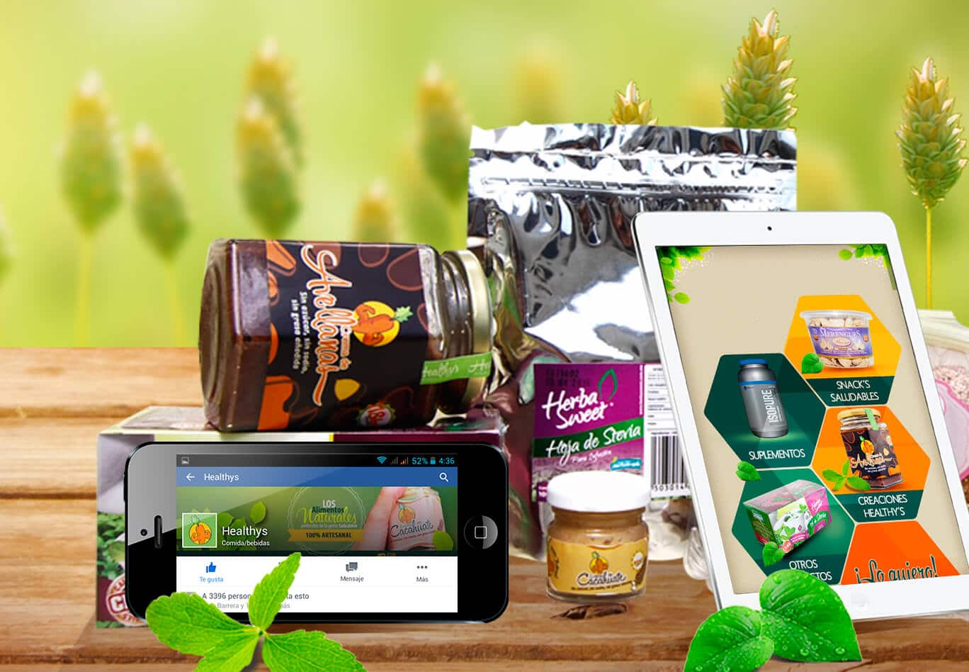 healthy'a productos naturales identidades corporativas