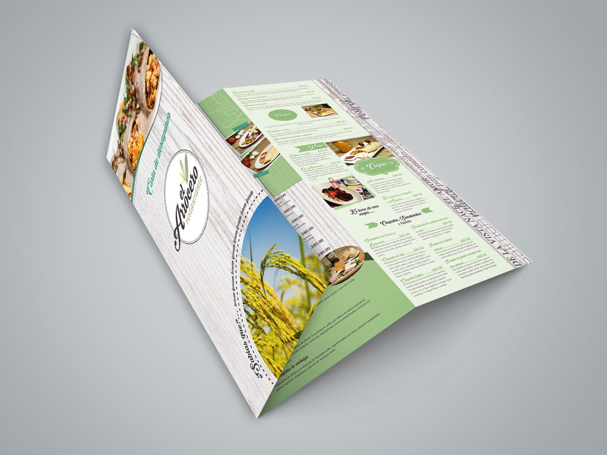 rediseño de logotipo arrocero menu triptico